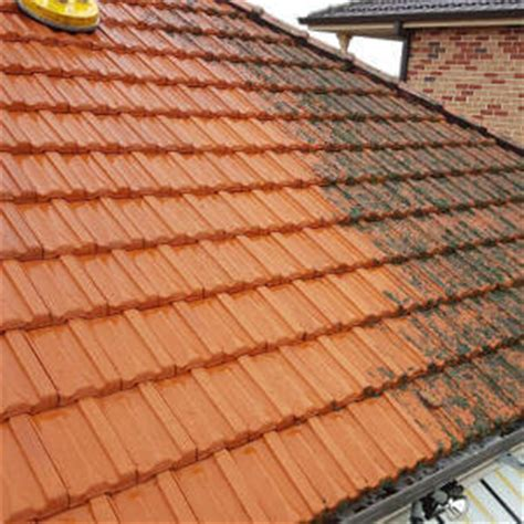 roof cleaning sydney roof repair roof painting