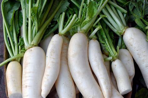root vegetables richardsons