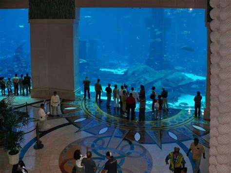 dubai hotel aquarium atlantis aquarium lobby of atlantis hotel in dubai places to go