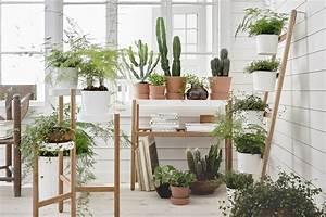 coup de coeur les supports pour plantes satsumas d39ikea With support pour plantes d interieur