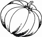 Pumpkin Coloring Pages Fall Printable Drawing Blank Pumpkins Benefits Template Clipartmag Colorings Outline Patch Getdrawings sketch template