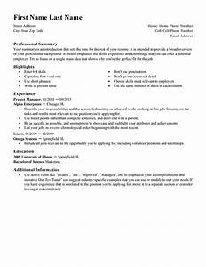 Professional resume template beepmunk for Free professional resume format