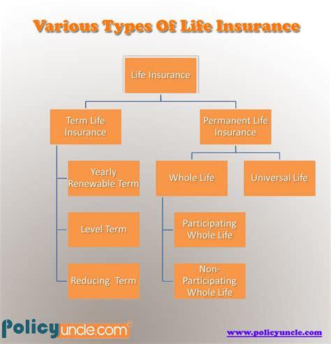 Term life insurance is also called pure life insurance, because your monthly premiums only pay for a death benefit, not any kind of investment component. Various types of Life Insurance | Visual.ly