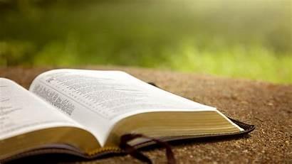 Torah Bible Jewish Study Learning Text