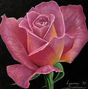 "Mauve Rose | 5""x5"" Original Acrylic Painting on canvas ..."