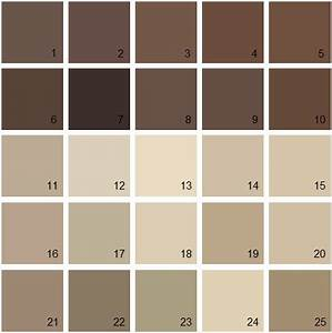 Dark brown paint color chart pictures to pin on pinterest for Interior paint colors browns