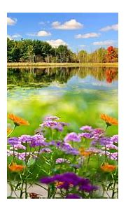 Nature video wallpaper collection   Amazing nature ...