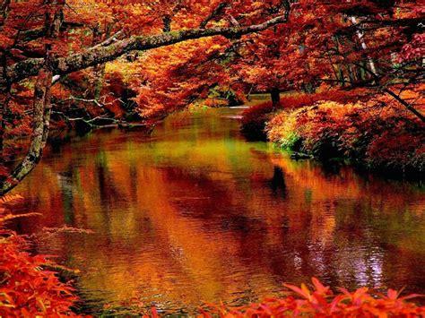 Autumn Creek Wallpaper | Free Autumn Downloads