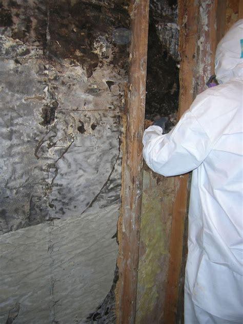 eisen environmental and construction asbestos removal