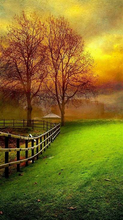 Nature Wallpapers Android Mobile