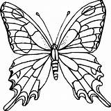 Butterfly Coloring Pages Monarch Pattern Printable Template Butterflies Colouring Patterns Templates Colour Printables Fly Diagram Outline Draw Easy sketch template