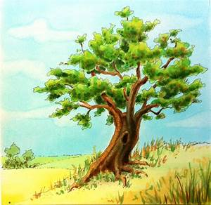 Photos: Colored Drawing Of Tree, - Drawings Art Gallery