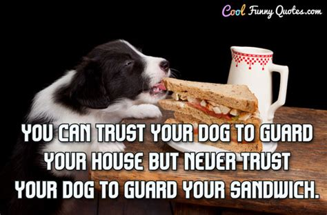 trust  dog  guard  house   trust