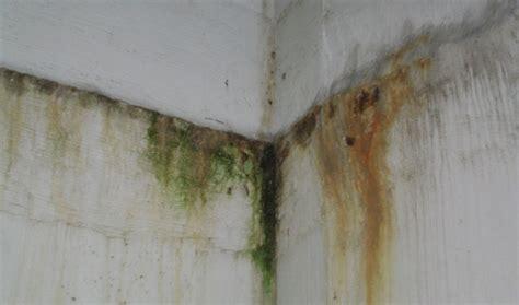 Risarcimento Danni Infiltrazioni risarcimento danni infiltrazioni acqua