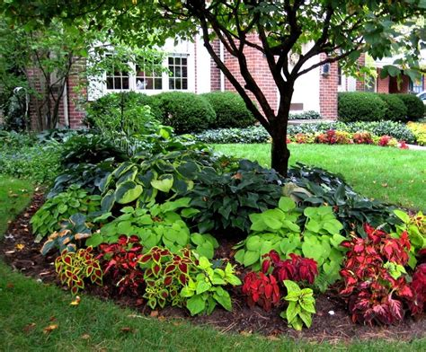 ideas for shade garden design ideas for small shade gardens home dignity