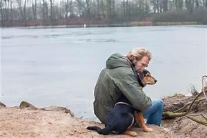 Kalorienbedarf Hund Berechnen : mit hund und katz lebt man ges nder migros impuls ~ Themetempest.com Abrechnung