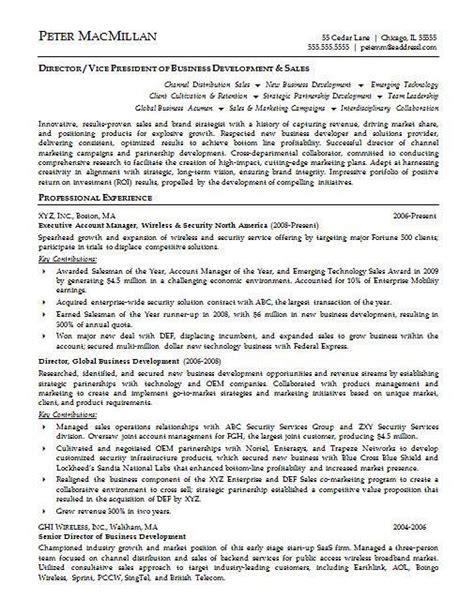 18210 account executive resume account executive resume exle resume exles
