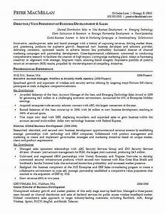 Account executive resume example resume examples for Account executive resume