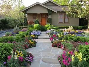 Цветы на даче: какие лучше всего посадить? [Фото, названия