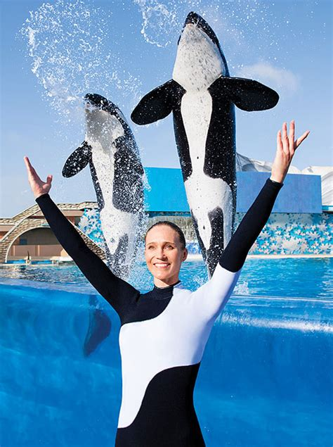 seaworld san antonio sea texas orlando america florida tx killer animals map tickets destination360 shamu diego trainers animal north whales