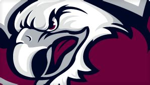 I love my manly warringah sea eagles. Sea Eagles vs Panthers - Round 26, 2017 | Zero Tackle