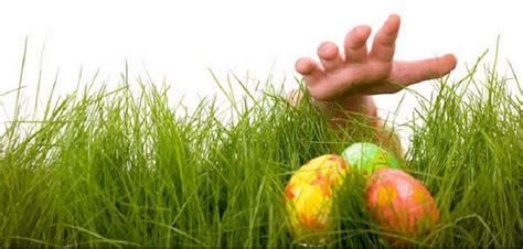 ecole de cuisine chasse aux œufs de pâques idées et conseils