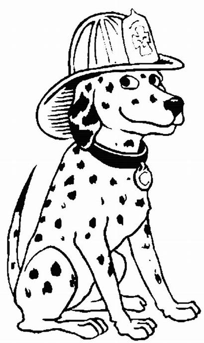 Coloring Fire Pages Helmet Firefighter Dog Wearing