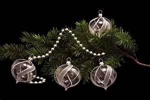 Weihnachtskugeln Aus Lauscha : 4 zwiebeln transparent silber gst christbaumkugeln ~ Orissabook.com Haus und Dekorationen
