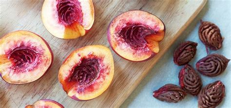 fruits with pits how to pit apricots plums nectarines other stone fruits like a chef 171 food hacks wonderhowto