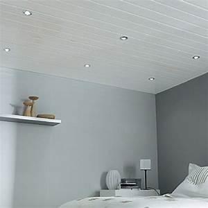 Faux Plafond Pvc : materiaux faux plafond maison travaux ~ Melissatoandfro.com Idées de Décoration
