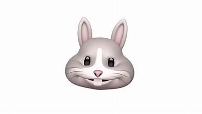Iphone Animoji Apple Rabbit Animojis Emojis Animated