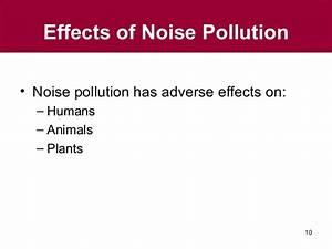 Final gs ch 10 noise pollution