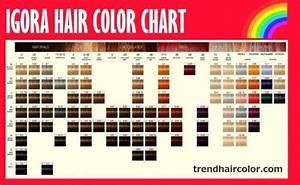 Igora Hair Color Chart Ingredients Instructions Igora