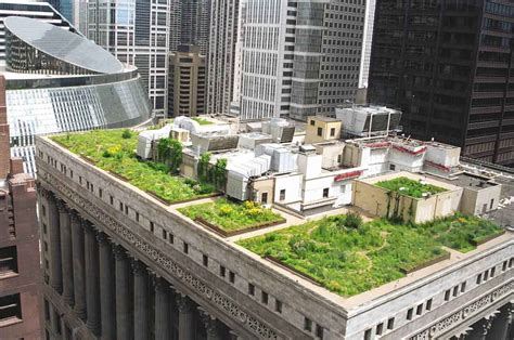 rooftop gardens creative urban roof gardens designs wallpapers hd photo gallery life insurance canada
