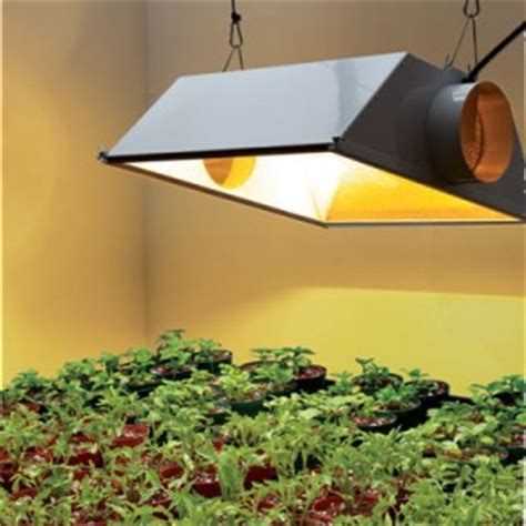 grow ls home depot indoor plant light home depot review handy home design