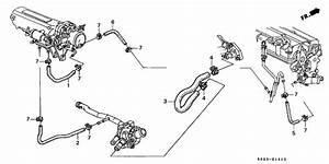 Em1 - Need Help Finding Throttle Body Coolant Hose Part Number - Honda-tech