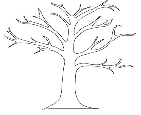 Tree Template Coloring Sheets by Simple Tree Branch Coloring Pages