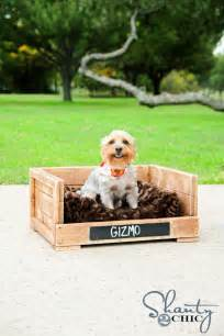 19 wooden dog beds to create for your furry four legged