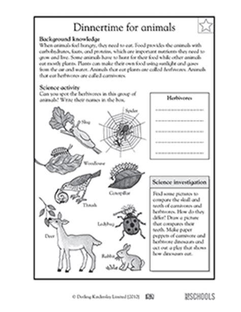 3rd grade 4th grade science worksheets animal dinnertime