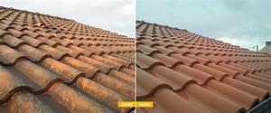 Nettoyage et demoussage de toiture Arnouville Les Mantes