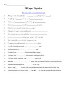 bill nye the science resume matter and energy worksheets abitlikethis