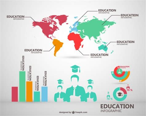 global education infographic vector