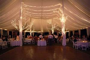 oooh i like these lights tree branches sl 2014 With decorated tents for wedding receptions