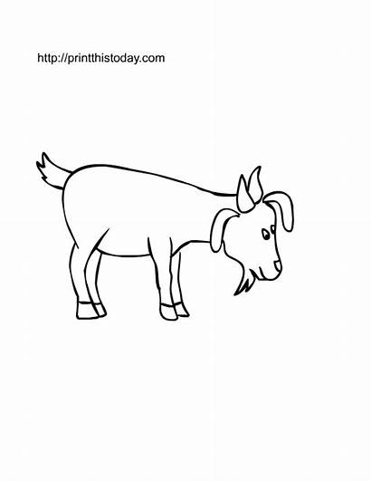 Farm Goat Printable Coloring Pages Animals Cut