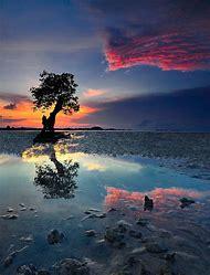 Pinterest Beautiful Nature Photography