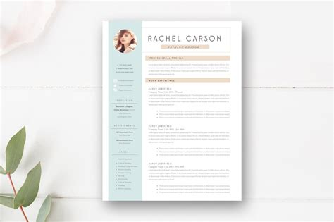 modern resume template  page resume templates