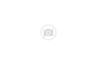 Cities Job Seo Usa America Map Engine