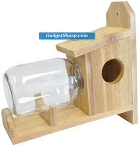 4 interesting squirrel feeder designs gadget sharp