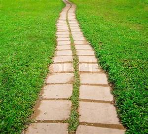 Stone block walk path in the park with green grass ...