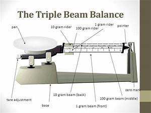 Triple Beam Balance Drawing At Getdrawings